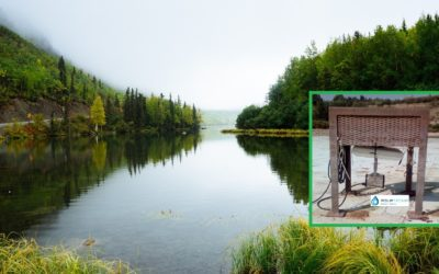 ¿Algas en tu depósito , lago artificial, estanque o balsa de riego?